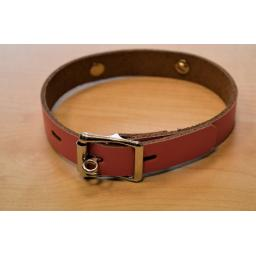 Lockable day collar (2).png