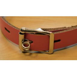 Lockable day collar (3).png
