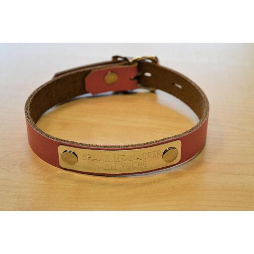 Lockable day collar (4).png
