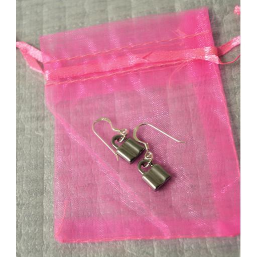 padlock earrings 1.jpg