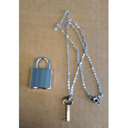 silver lock 3.jpg