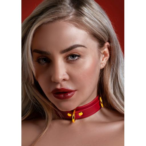 D Ring Collar deluxe from Taboom